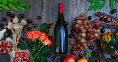 Wine Making with Fruit