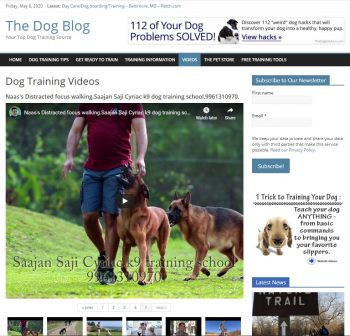 Dog Training Tips Turnkey Website
