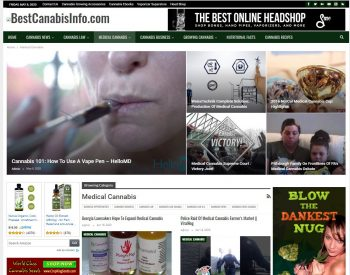 Cannabis News, Cbd Info Turnkey Website Business